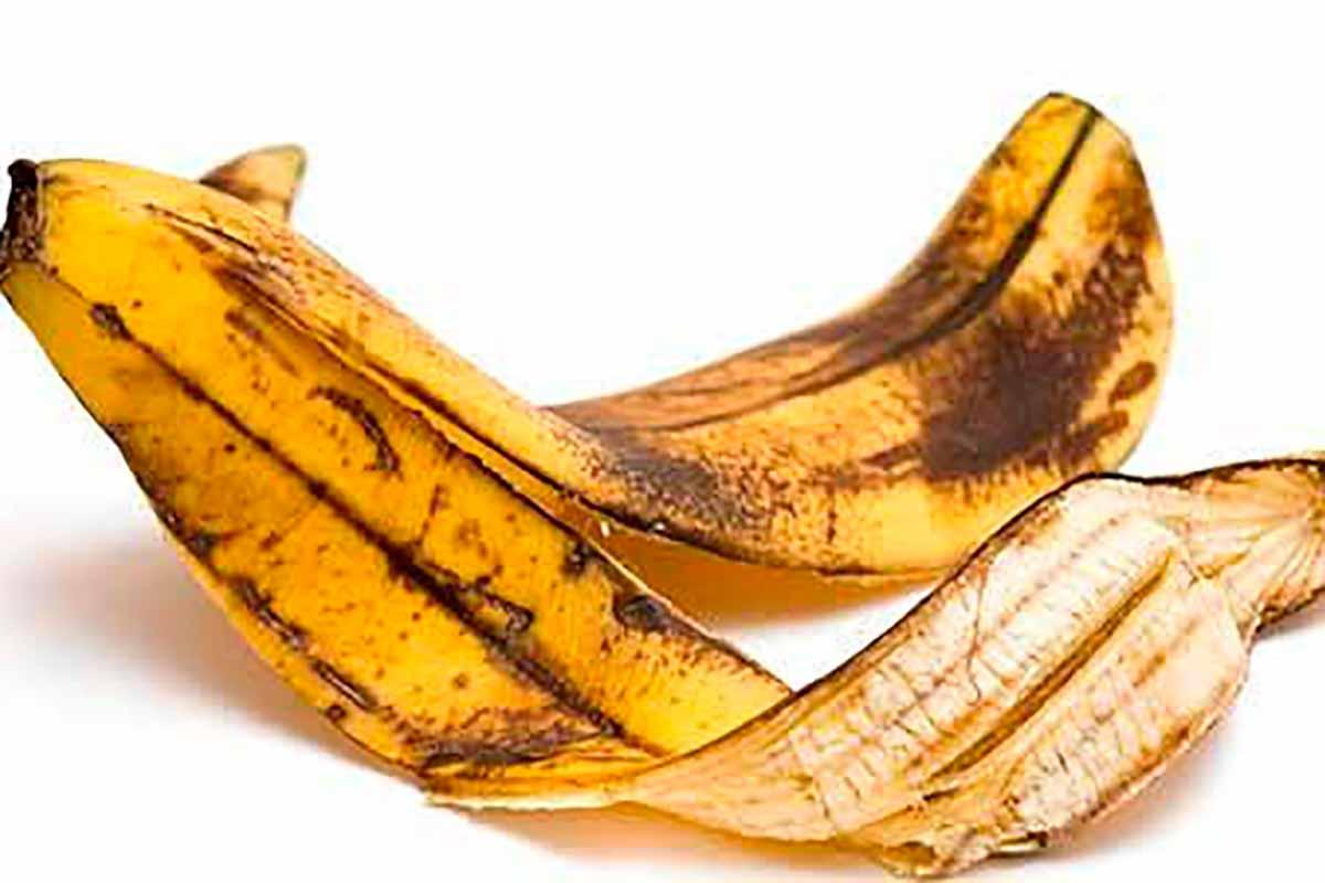 beneficios da casca de banana